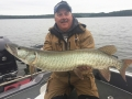 Another cure for a cold front? Send in the Suicks!