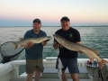 Jeremy Sivis and Steve combined for this double while fishing on Lake St. Clair with Capt. Matt Firestein.