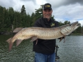 Kevin Schmidt and Steve boated two muskies within seven minutes at one point in August. This was the largest.