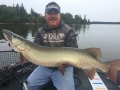 This was the first musky caught as Steve field tested St. Croix's new Legend Tournament 10-foot rods.