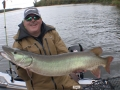 Steve and his partner hadn't seen a musky so they switched things up and caught this musky on the first spot after moving.