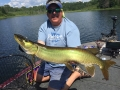 "In hot, flat calm, sunny conditions, Steve triggered this musky with a 7"" Slammer in a boatside rise."